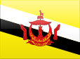 http://s01.flagcounter.com/images/flags_128x128/bn.png