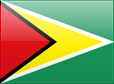 http://s01.flagcounter.com/images/flags_128x128/gy.png