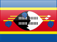 http://s01.flagcounter.com/images/flags_128x128/sz.png