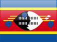 https://s01.flagcounter.com/images/flags_128x128/sz.png